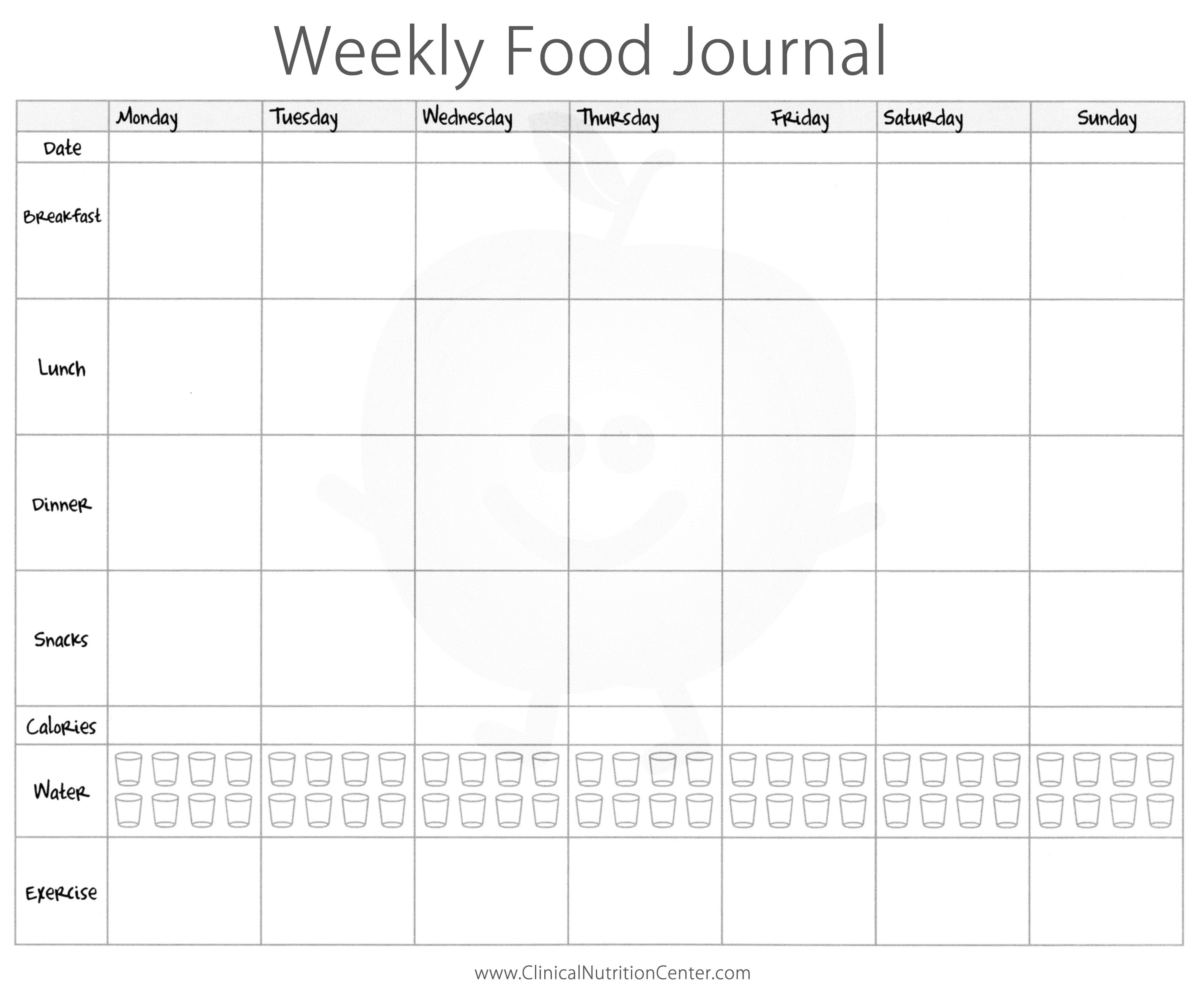 Fieldstation.co  Food Diary Template Free
